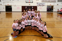 Lady Bulldogs vs Fairfield - Pink Out 09/29/2015